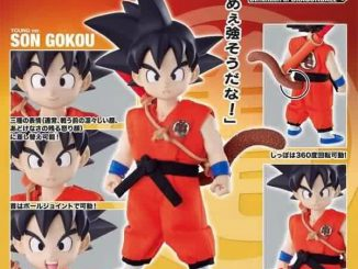 Dimension of Dragon Ball Kid Goku