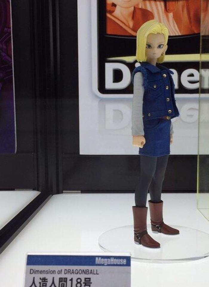 Dimension of Dragon Ball Android 18