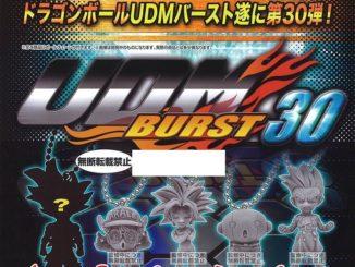 UDM Burst 30