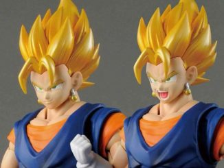 Figure rise Standard Vegetto