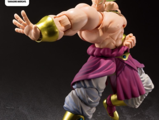 Dragon Ball Tour Broly Exclusive